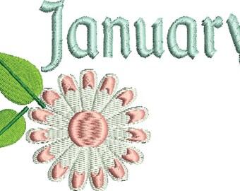 January Daisy Embroidery Design