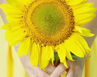 Sunshine:  11x14 Fine Art Photograph