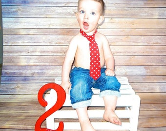 Baby Boy/ Toddler Red with White Polka Dot Tie.  It will fit a baby to a 2 year old.
