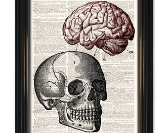 Medical Anatomy Dictionary Art Print. Skull and Brain Diagram Dictionary page print. Buy any 3 get 1 FREE! Vintage paper 8x10 size