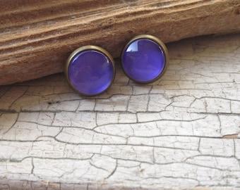 Purple Framed Post Earrings. Antique Bronze Stud Earrings (#012)