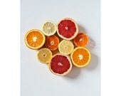 Citrus Fruit, Fine art photo print, 20x30cm part of ZICHT