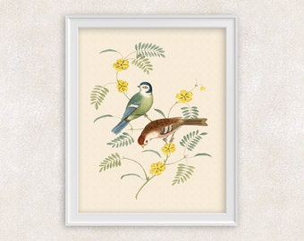 Antique Bird Art - 8x10 PRINT Two Perching Birds with Yellow Flowers - Passerine Birds - Flower Art Giclee - Item #113