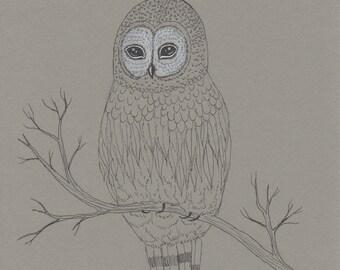 Whimsical owl art, nursery artwork, woodland illustration, grey owl drawing