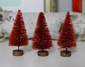 3 Red Bottle Brush Trees