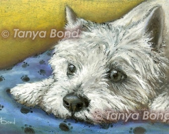 Daydreaming westie - West Highland Terrier - 5x7print of an original painting by Tanya Bond