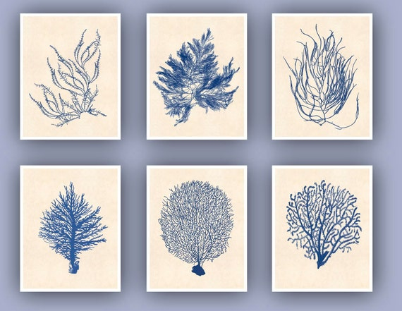 Sea fan art Prints, Ocean seafan Print, Sealife Nautical Art, Blue Sea fan art, nursery art, beach cottage decor, coral art, 6 prints 11x14