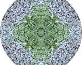 Mandala Art, Abstract Nature Print, Geometric Art Print, Peaceful Round Art, Fine Art Print in Icy Blue & Green