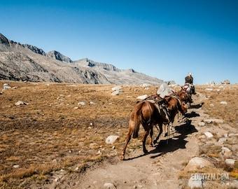 Move along / John Muir Wilderness / John Muir Trail / Landscape Photography