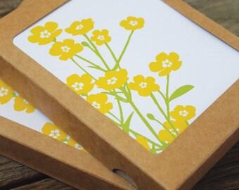blank note card set / buttercups