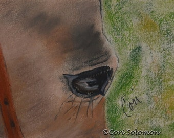 Buckskin Horse Art Pastel Drawing Eye of Horse By Cori Solomon
