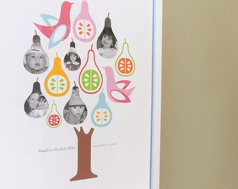 Family tree with photos, birds and pears, CUSTOM, LARGE