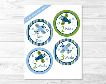Airplane Monthly Milestone Stickers / Iron Ons / Printable INSTANT DOWNLOAD