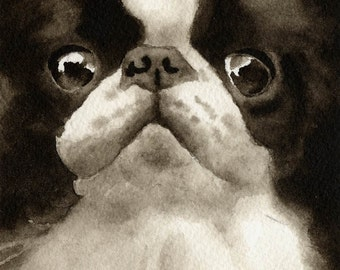 JAPANESE CHIN Sepia Art Print Signed by Watercolor Artist D J Rogers