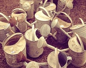 Watering Cans, Paris Photography French Market Print, For The Kitchen, Spring Decor, Brown, Rustic, Country Decor
