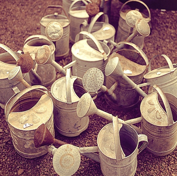 Watering Cans, Bathroom Art, Paris Photography French Market Print, For The Kitchen, Spring Decor, Brown, Rustic, Country Decor