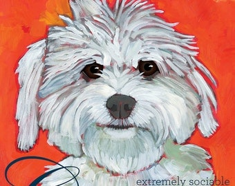 Maltipoo wall art, coton de tulear wall art, coton dog wall art, coton dog magnets, maltipoo stationery