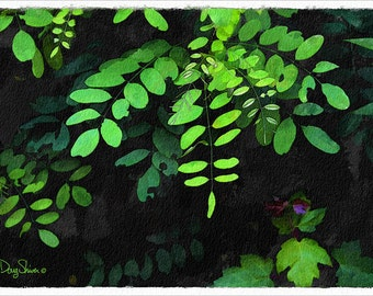 In Plain Sight (Nature - Botanical - Watercolor - Leafy - Green - Plants - Wall Decor)