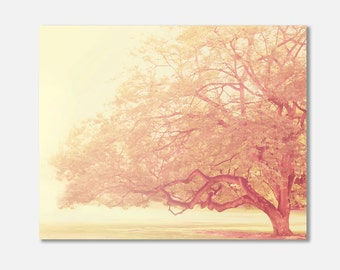 tree canvas wrap, pink nursery decor, buttercream yellow, tree photography, dreamy, girls room wall art, nature photo, spring, pastel