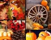 Autumn Spice - Home Fragrance Oil - Warmer / Burner Oil - 2 Fluid Ounces
