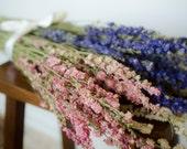 ON SALE! Bunch of larkspur, purple larkspur, pink larkspur, white larkspur, blue dried flowers, white dried flowers, pink dried flowers