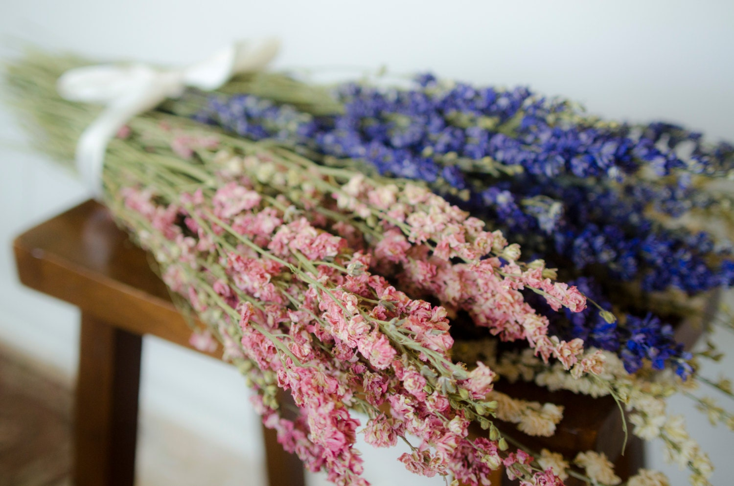 How to scrapbook dried flowers - Bunch Of Larkspur Purple Larkspur Pink Larkspur White Larkspur Blue Dried Flowers White Dried Flowers Pink Dried Flowers