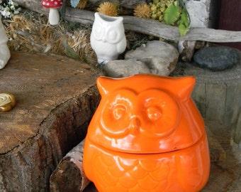 Owl Dish  Container   Owl Ring Box , Jewelry box,  Change holder Salt Pig  .fruit Orange  ... Glazed ceramic   Vintage Style Hootie Hoots