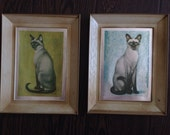 Two Siamese Cats in vintage plastic frames