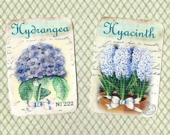 Note Cards & Stickers, Floral Note Cards, Hydrangea Hyacinth
