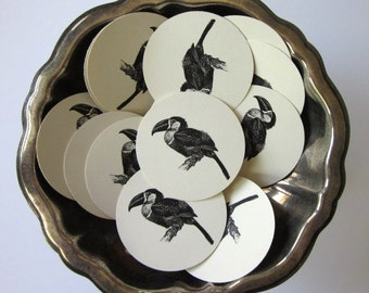 Toucan Parrot Bird Tags Round Paper Gift Tags Set of 10