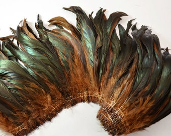 """25-30pcs Rooster Tail Feathers-Dark Brown, 6-8"""" tall"""