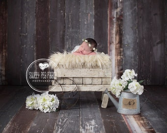 Baby Toddler Child Photography Prop Digital Backdrop for Photographers -No. 2 Wagon DIGITAL Backdrop