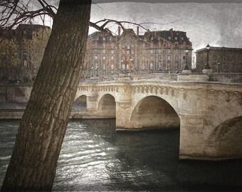 le pont neuf, paris - digital print