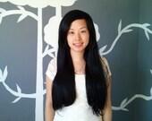 VENTE : Ébène - perruque rallonges Layerless noir - livraison gratuite