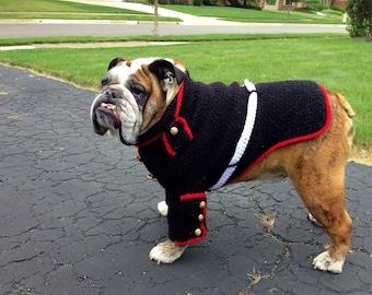 Marine Dog Uniform - Marine Corps Dog - Marine Corps devil dog sweater - Marine Corps mascot - USMC English bulldog - Hobbyist License 21512