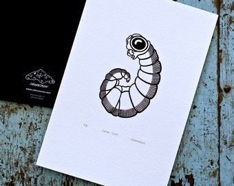 Larva 'specimen' (noir) - Limited edition one-colour screenprint