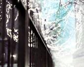 Fairy Lights Print, Gold Blue Black Wall Art, Urban City Photography - Modern Winter Print