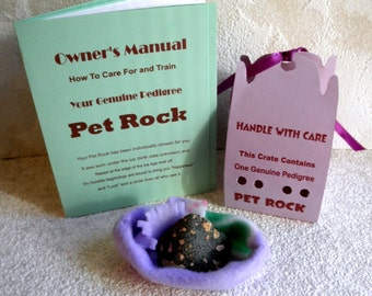 PET ROCK in carrying case with Bed n Training Manual