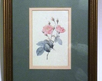 Vintage Frame Botanical Print Gilt Gold Frame