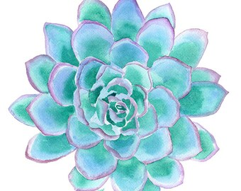Succulent Watercolor Painting - 5 x 7 - Giclee Print Reproduction - Teal Cactus Botanical