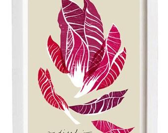 Kitchen Art Print - Radicchio - Purple Burgundy Vegetable Art  -  high quality fine art print