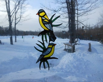 American gold finches and pine branch