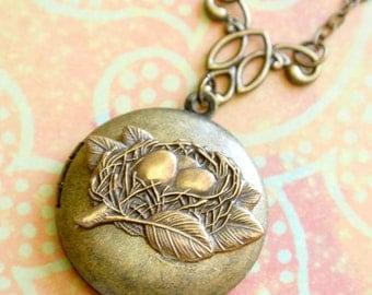 Bird Nest Locket Necklace, Locket Jewelry