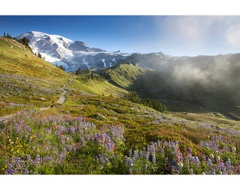Wildflowers and Mount Rainier, Sunrise, Landscape Photography, Fine Art Photo Print, Nature, Paradise, Sunrise, Fog, Blue, Decor, Alpine