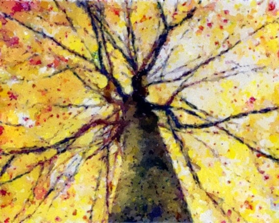 Watercolor Painting Print Autumn Tree Top 8x10 Giclee Print Nature Forest