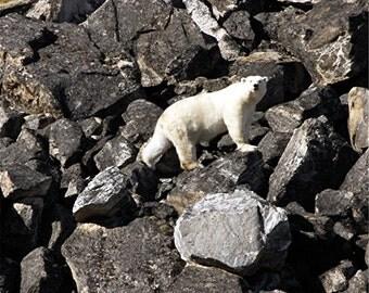 Polar Bear - Notecard - Canadian High Arctic Polar Bear- greeting card - stationary