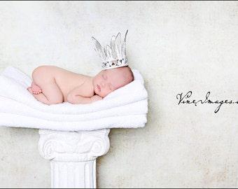 Newborn toddler Vintage Garden princess crown.