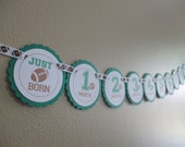 READY TO SHIP Football Banner: Just Born/0-12month First Birthday Photo Picture Banner with clips to hang 4x6 pictures. Green. Footballs.