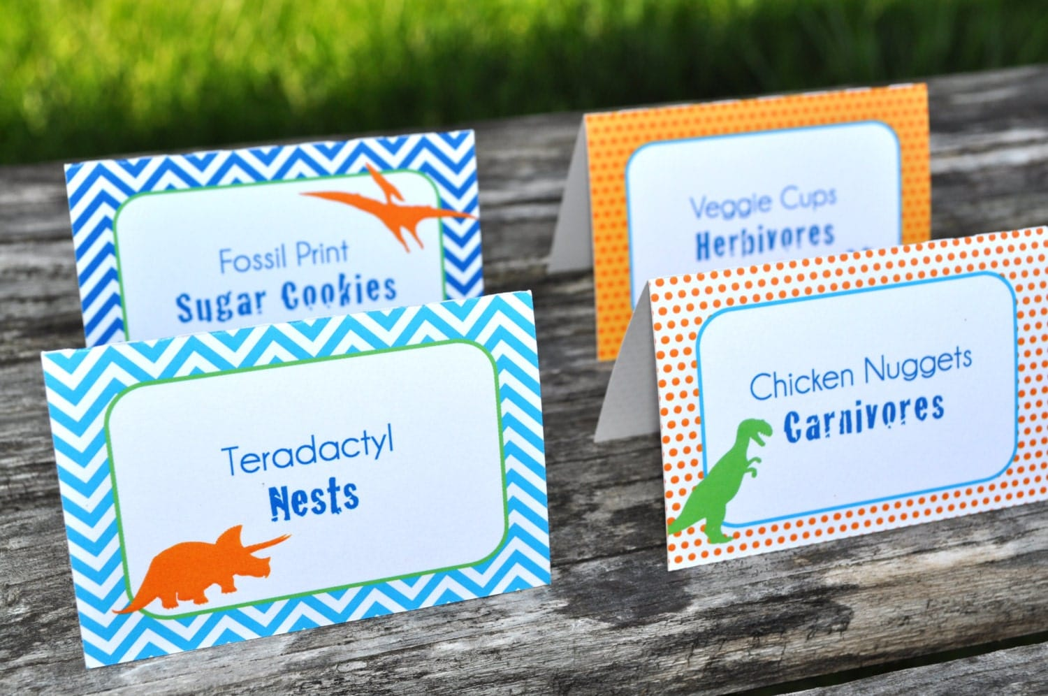 Dinosaur Birthday Party Food Labels Dinosaur Theme Birthday