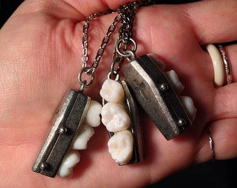 LAST ONE - Tooth Fairy Series: Spooky Tooth Triple Real Molar Coffin Pendant Necklace